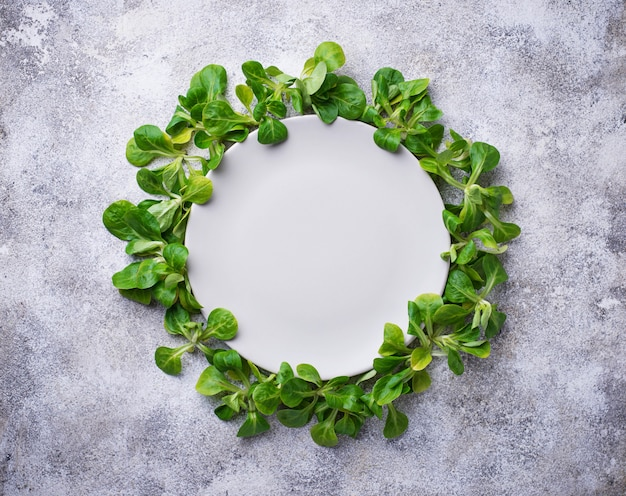 A frame of corn lettuce around the plate.
