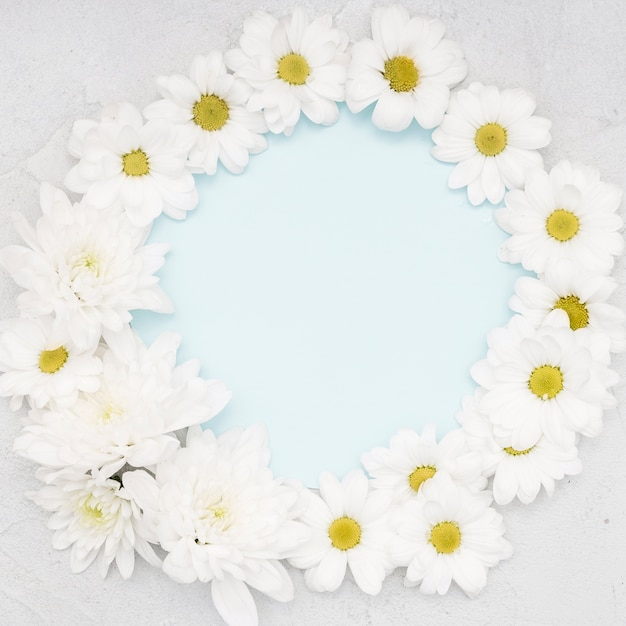 Frame of daisies and copy space