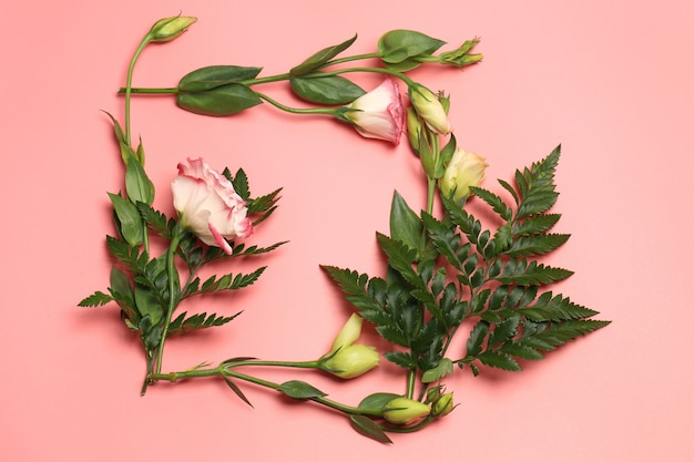 Frame of delicate flowers on a pink background