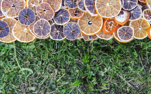 Frame of dry slices of orange and grapefruit. fruit chips on green grass background.
