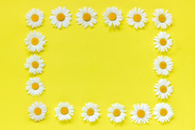 Рамка из цветочных прямоугольников венок из цветов ромашки. копировать пространство макет шаблона