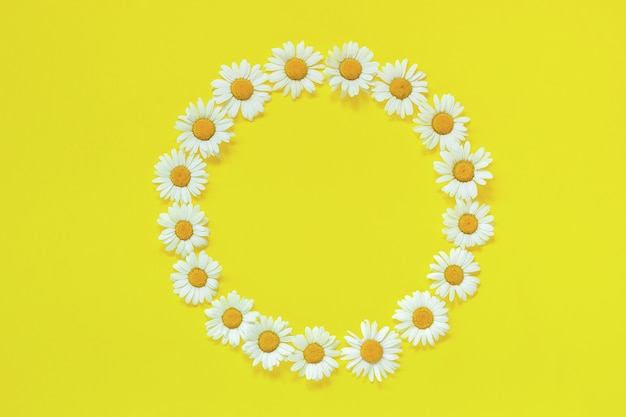 Frame floral round wreath of flowers chamomile on yellow background