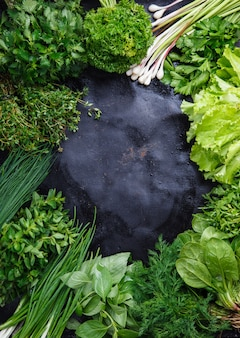 Frame of fresh green herbs