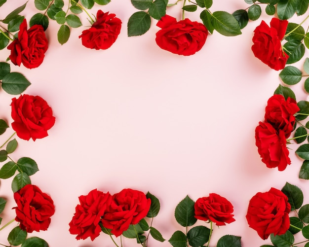 Frame of fresh red roses