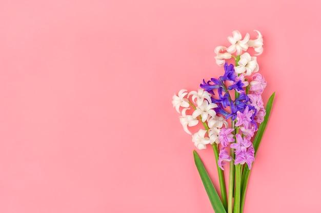 분홍색 배경에 흰색과 라일락 히 아 신 스의 봄 꽃의 꽃다발에서 프레임 상위 뷰 평면 배치 휴가 카드 안녕하세요 봄 개념