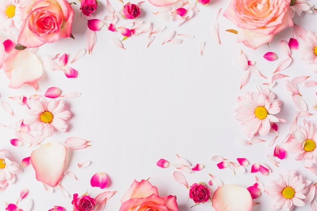 Frame from cute flowers and petals