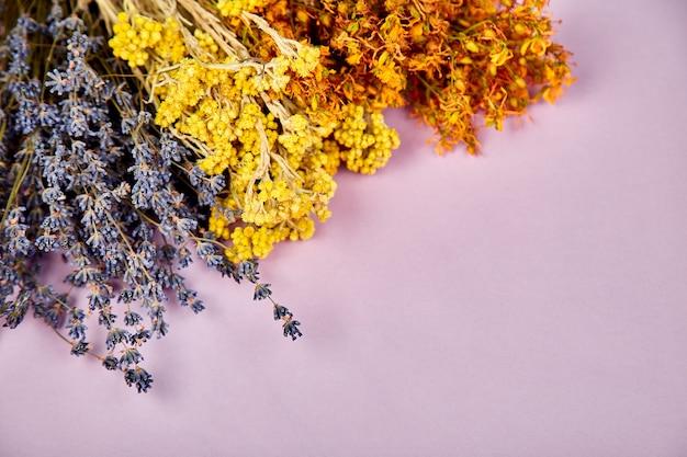 乾燥したハーブの花からのフレーム