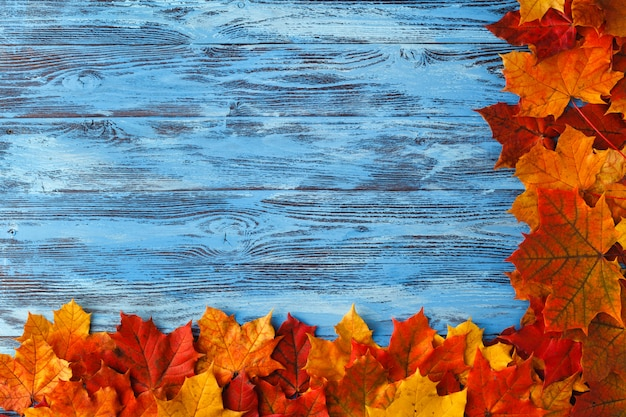 Frame from maple leaves on blue wooden background