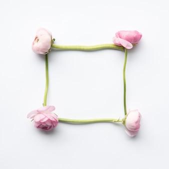 Кадр из розовых пионов