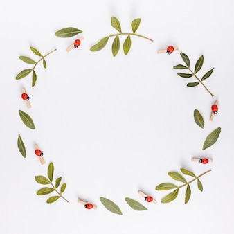 Frame from plant branches on white table