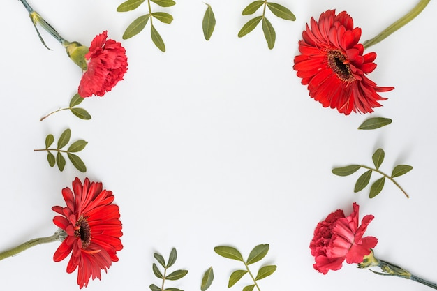 Frame from red flowers and green leaves