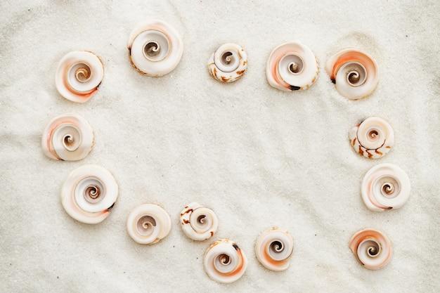 シェルからのフレーム。自然な白い海の塩の背景に貝殻。