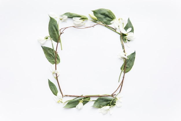 Frame from twigs and snowdrops