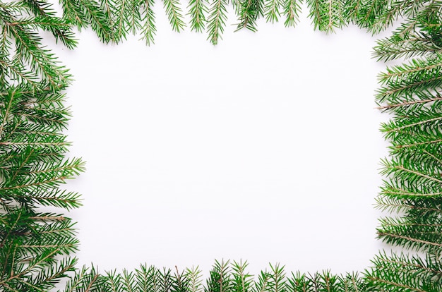 Frame of green prickly young christmas tree branches on white background.