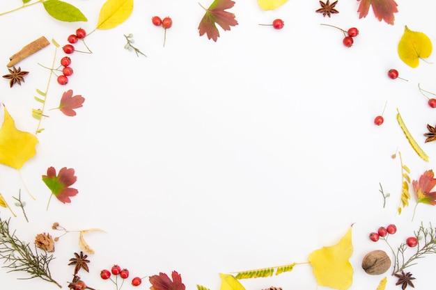Frame made of autumnal leaf on white backgrounde