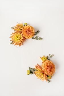 Frame made of beautiful ginger dahlia flower buds on white surface