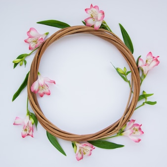 Frame made of beautiful pink flowers on white background