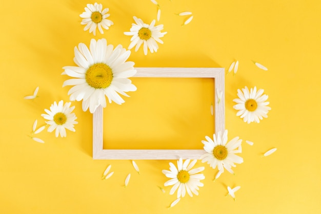 Frame made of chamomile, petals, leaves on yellow background.