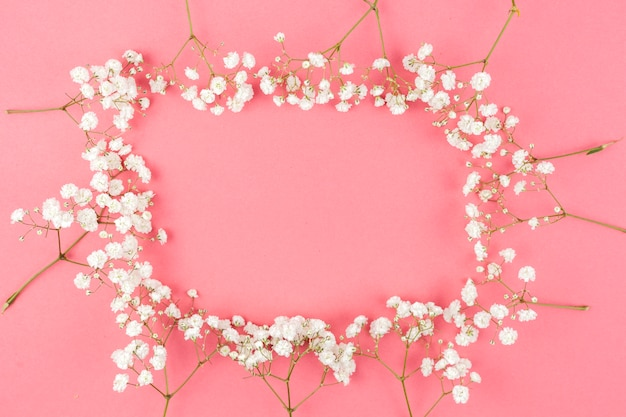 Frame made from white gypsophila on peach background