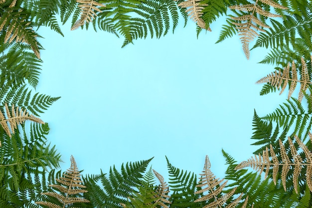 Frame made of golden fern leafs frond on blue background