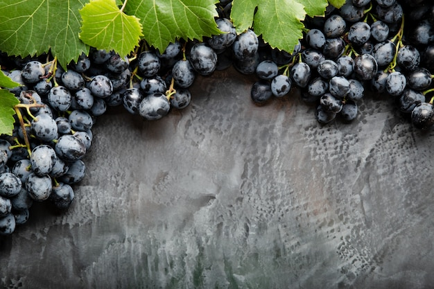 Frame made of grapes. black juicy grapes on vintage dark concrete background. copy space for text or menu on black scuffed background. frame border made of grape fruits with place for text.