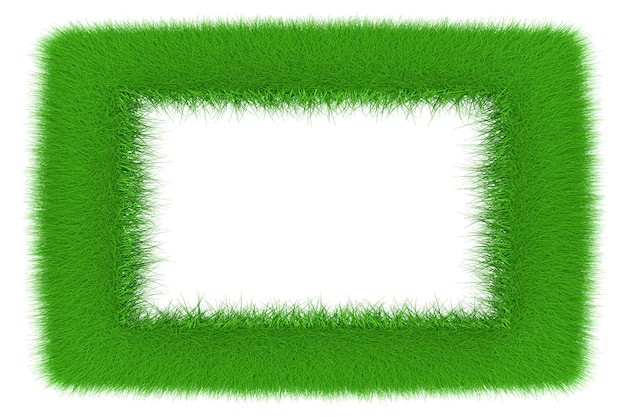 A frame made of growing grass. 3d illustration.
