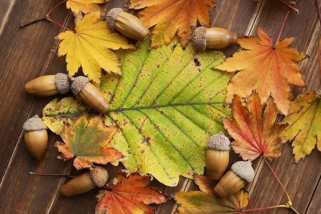 Рама сделана из осенней кленовой листвы и желудей на фоне дубовых листьев с копией пространства.