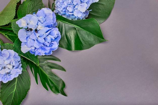 푸른 수국과 파란색 배경에 녹색 잎으로 만든 프레임. 평면 평신도, 평면도. 결혼식의 배경.