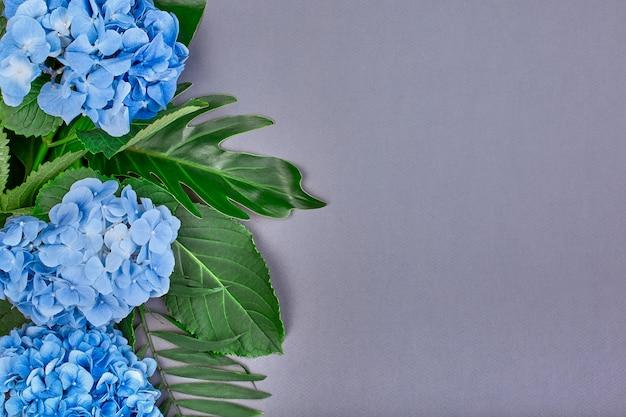 Рамка из голубой гортензии и зеленых листьев на синем