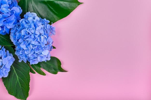 Рамка из голубой гортензии и зеленых листьев на розе