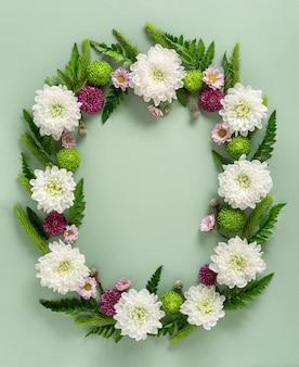 パステルグリーンの背景に分離された色とりどりの花菊で作られたフレーム。花の構成。菊の花の夏の花輪。フラットレイ。