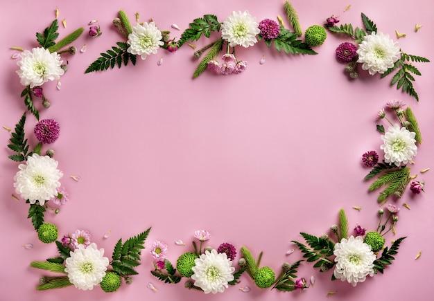 パステルピンクの背景に分離された色とりどりの花菊で作られたフレーム。花の構成。菊の花の夏の花輪。フラットレイ。