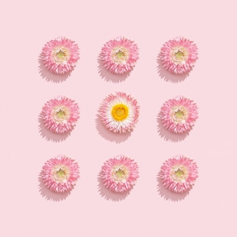 부드러운 분홍색에 말린 꽃으로 만든 프레임