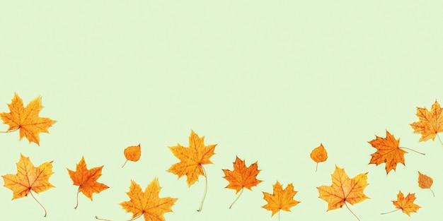 コピースペースと薄緑の背景に乾燥した紅葉で作られたフレーム秋の最小限のコンセプト