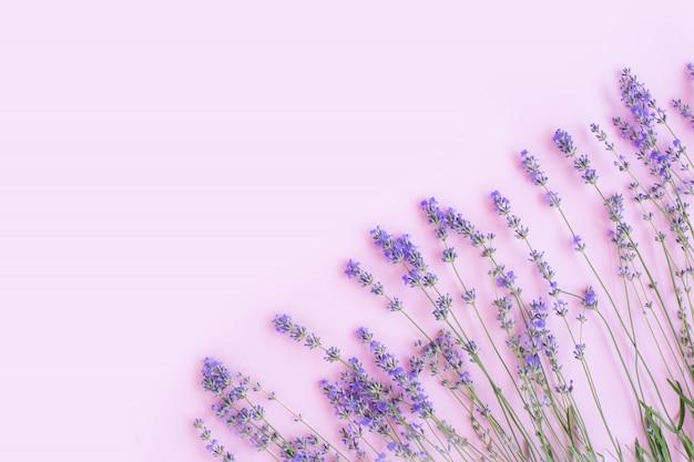 新鮮なラベンダーの花で作られたフレームフラット横たわっていた、