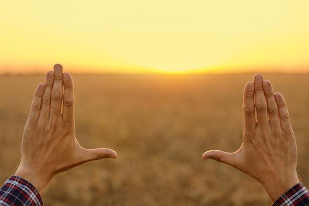 日没時の麦畑で手で作られたフレーム