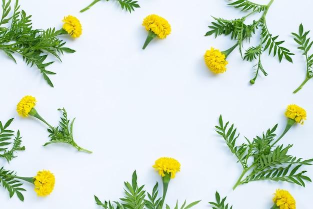 マリーゴールドの花で作られたフレーム。