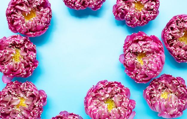 青の背景にピンクの蓮の花で作られたフレーム。上面図