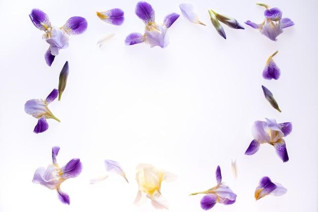 白地に紫のアイリスの花で作られたフレーム。フラット横たわっていた、トップビュー。