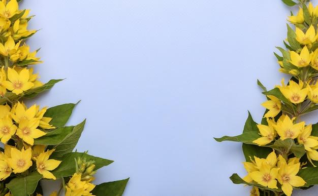 블루 파스텔 배경에 여름 노란색 꽃으로 만든 프레임. 텍스트에 대 한 빈 자리와 꽃 조성입니다. 평면도. 자연 경계.