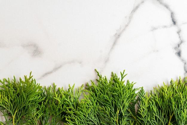 흰색 대리석 배경에 흰색 삼나무 thuja 가지로 만든 프레임, 평평한 누워. 복사 공간이 있는 모형 카드.