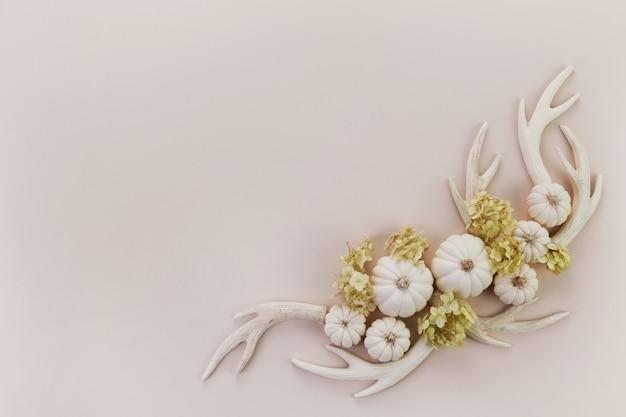 Каркас из белых тыкв, оленьих рогов и зеленых цветов. вид сверху, плоская планировка.