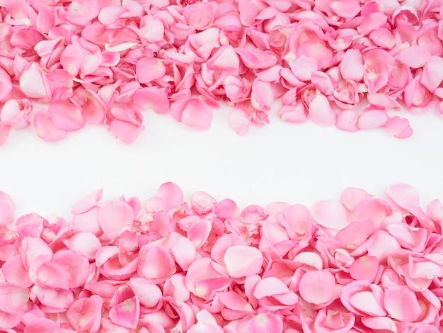 Frame made of pink rose petals