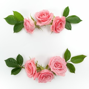 Frame made of pink roses isolated