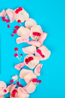 Frame made of roses petals on light blue flat lay backgroung. flowers composition