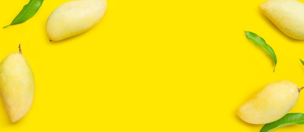 Frame made of tropical fruit, mango on yellow background. top view