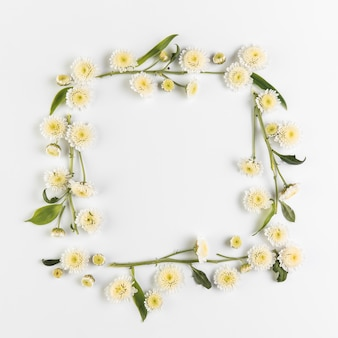 Frame made with chrysanthemum flowers and twig on white background