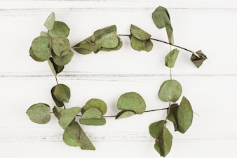 Frame made with dry leaves on white wooden backdrop