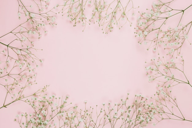 Frame made with gypsophila or baby's-breath flowers on pink background