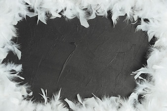 Frame made with white feathers